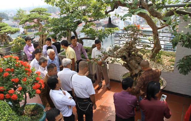 Những thú chơi xa xỉ 'khoe' đẳng cấp của giới nhà giàu Việt