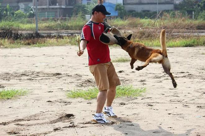 Hốt bạc nghề dạy thú cưng
