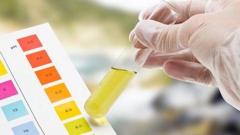 Chuẩn đoán bệnh ung thư tụy bằng protein