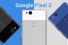 Google Pixel 2 bản màu trắng trì hoãn ngày mở bán