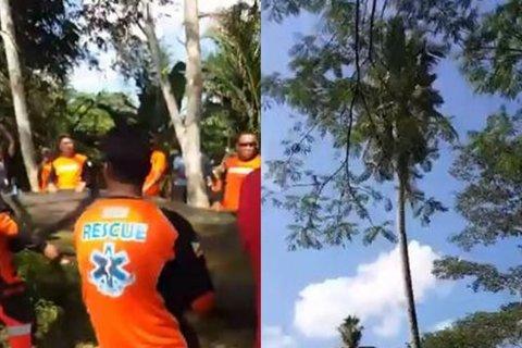 giải cứu người đàn ông sống trên cây dừa suốt 3 năm
