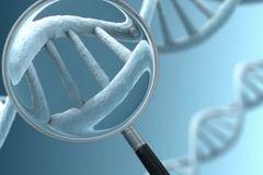 Bệnh ung thư tuyến tụy có khả năng di truyền không?