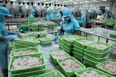 Việt Nam bị 'rút thẻ vàng', nguy cơ hải sản hết cửa vào EU