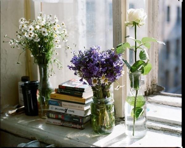 Ngắm thu qua lãng đãng bên khung cửa sổ đẹp mê hồn