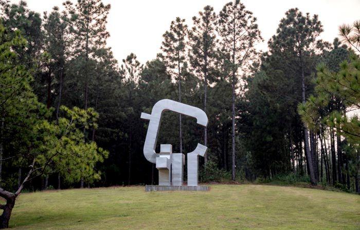 Chiêm ngưỡng những tác phẩm của 'Nghệ thuật trong rừng'