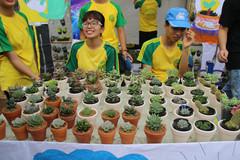 Sinh viên Nhân văn bán chữ, sinh viên Nông nghiệp bán cây