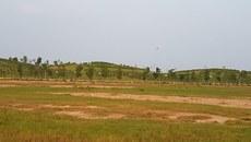 Thái Bình xem lại các dự án BT