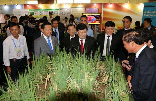 APEC 2017 ưu tiên bàn về an ninh lương thực