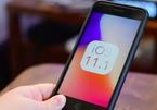 Apple phát hành iOS 11.1 sửa lỗi và thêm nhiều emoji mới