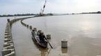 Đề nghị tạm dừng lấp sông Tiền xây công viên trái cây 'khủng'
