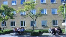 Bữa trưa tình cờ tại trường phổ thông Thụy Điển