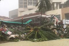 Bão Damrey sức gió trên 100km/h tàn phá Nha Trang tan hoang
