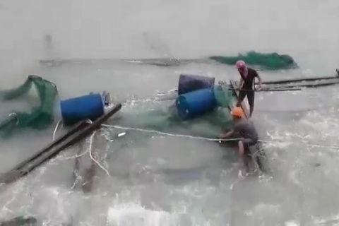 Bão số 12: Đảo Lý Sơn ảnh hưởng nặng