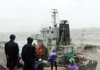 Còn 12 thuyền viên mất tích trên biển Bình Định