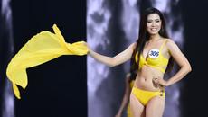 Vì sao bão lớn đổ bộ vẫn tổ chức bán kết Hoa hậu Hoàn vũ?