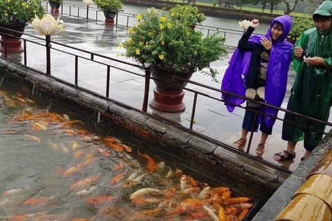 Cá bơi trong thành cổ Huế