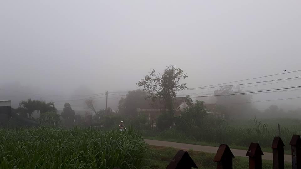Sương mù ở huyện Củ Chi (Ảnh Ngọc Thanh)