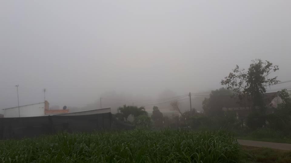 """""""Rất lâu lắm rồi tôi mới thấy cảnh sương mù dày đặc như vậy. Hình ảnh rất thơ mộng, chẳng khác nào như tôi đang ở Đà Lạt vậy""""- anh Ngọc Thanh chia sẻ"""