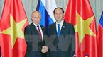 Chủ tịch nước gặp song phương Tổng thống Nga Vladimir Putin