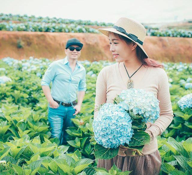 Check - in tại cánh đồng hoa cẩm tú cầu đẹp ngất ngây ở Đà Lạt - ảnh 11
