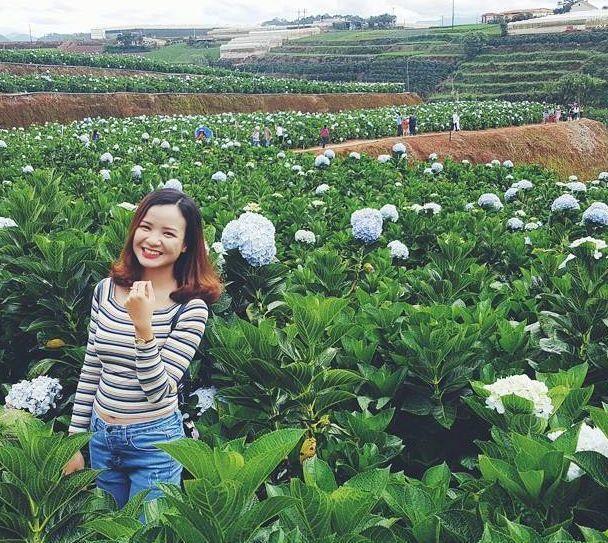 Check - in tại cánh đồng hoa cẩm tú cầu đẹp ngất ngây ở Đà Lạt - ảnh 5