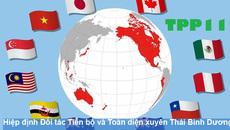 TPP phiên bản mới: Hé lộ con số Việt Nam hưởng lợi