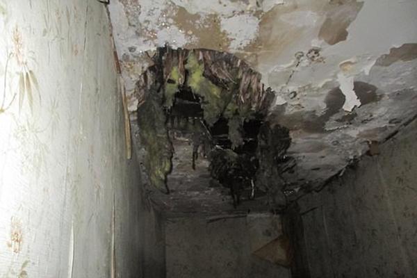 Mua nhà ma cũ nát giá 1 bảng Anh, cặp vợ chồng cải tạo thành căn hộ đẹp kinh ngạc - ảnh 3