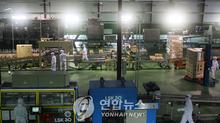 Hàn Quốc bất ngờ 'bật đèn xanh' cho Triều Tiên