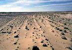 Bí ẩn vùng đất vô chủ rộng hàng nghìn cây số vuông