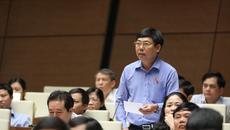 ĐB truy nguồn gốc 3 tỷ USD người Việt mua nhà tại Mỹ