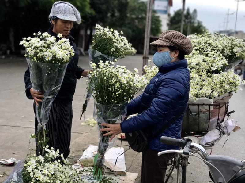 Mùa cúc họa mi xao động từ Nhật Tân ra khắp phố phường Hà Nội 4