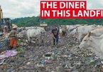 Nhà hàng cho phép khách đổi rác lấy đồ ăn