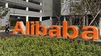 UBND TP.HCM giao các sở kiểm tra hoạt động Địa ốc Alibaba