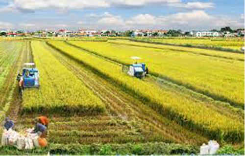 2018, thêm 3.300 xã đạt chuẩn nông thôn mới