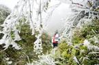 Thời tiết 24/11: Miền Bắc rét nhất đợt, khả năng có băng giá