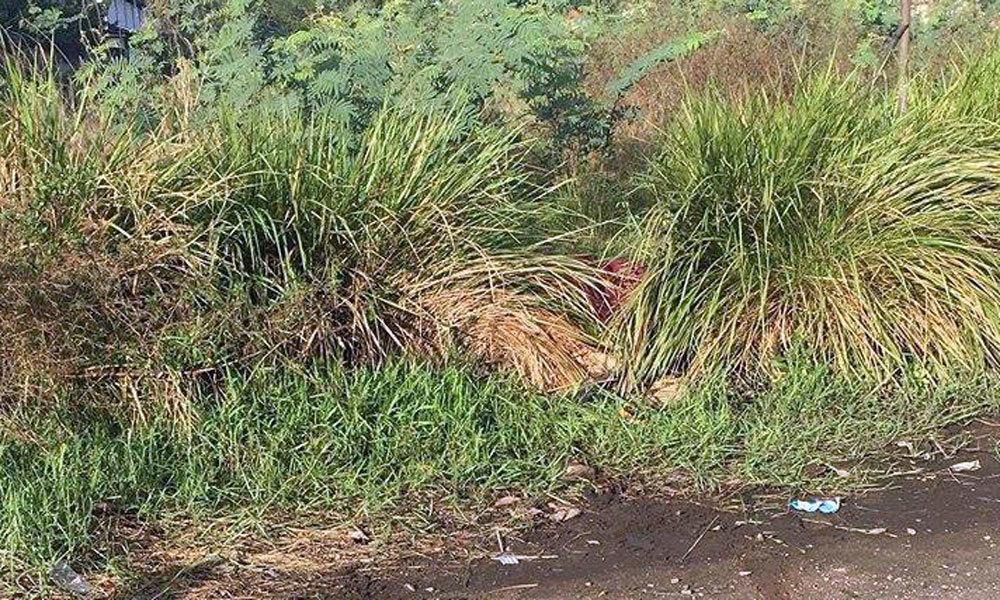 Nam thanh niên nghi bị giết, thi thể giấu trong bụi cỏ