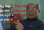 Có cần tiếp tục cải tiến tiếng Việt sau nhiều biến động?