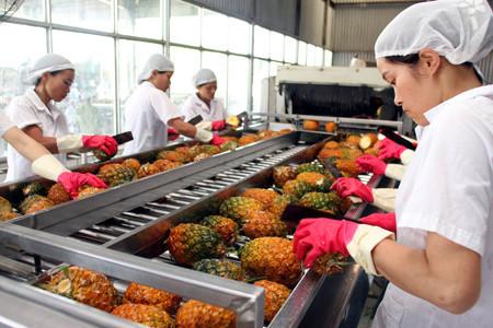 xuất khẩu rau quả,xuất khẩu dầu thô,xuất khẩu nông sản,nông sản việt nam