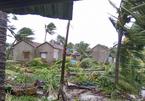 Liên hợp quốc hỗ trợ VN 4 triệu đô khắc phục thiên tai