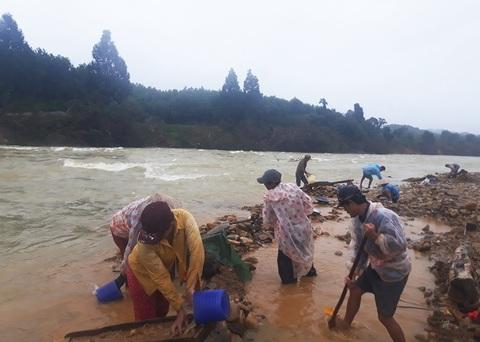 Đãi vàng trái phép ở Quảng Nam