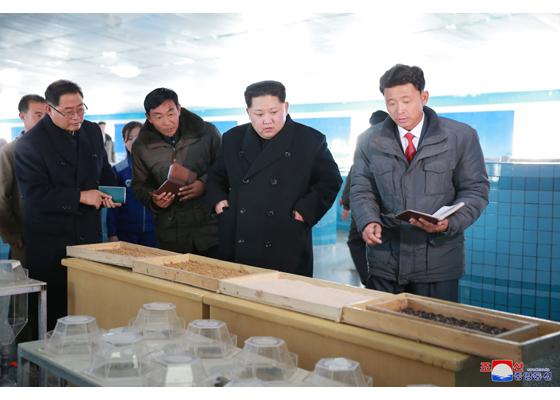 Giữa tin đồn sắp thử tên lửa, Kim Jong Un đi thăm trại cá
