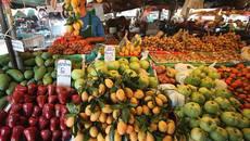 Sợ hàng Tàu chuyển qua ăn đồ Thái: Không thoát hiểm họa nhiễm độc