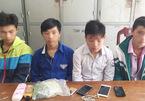 Nhóm học sinh chuyên trộm đêm sa lưới