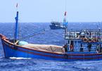 Làm rõ việc 3 thuyền viên VN bị tạm giữ tại New Zealand