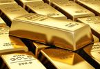 Giá vàng hôm nay 9/4: USD được đà, dìm vàng chìm sâu