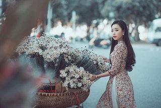 MC xinh đẹp dệt màu đông lãng mạn bằng cúc họa mi