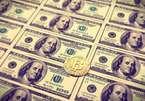 Ngất lên ngất xuống vì mất 75 triệu USD bitcoin