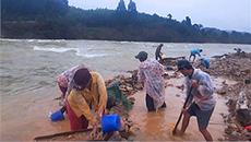 Đào đãi vàng bên sông chảy xiết sau lũ