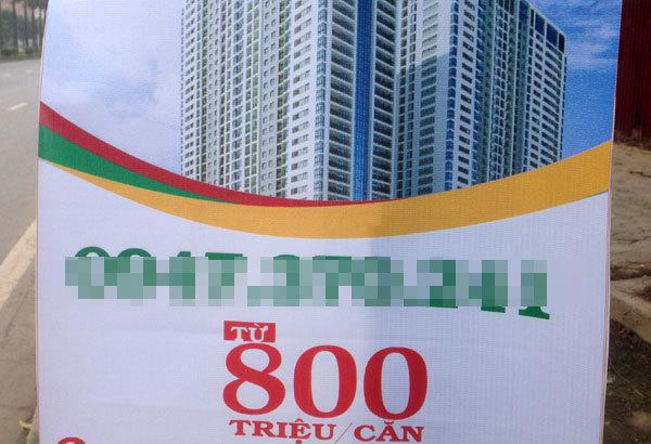 dự án,ciputra,dự án times city,royal city,chủ đầu tư,Sunshine City,dự án bất động sản