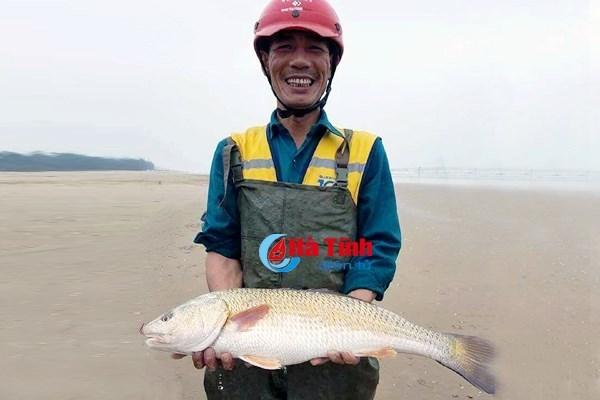 cá sủ vàng,cá quý hiếm,cá lạ